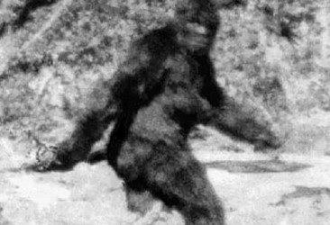 Why Bigfoot and the 'Abominable Snowman' Loom Large in the Human Imagination – In Cultures Around the World, Folklore of a 'Wild Man' Share A Common Narrative